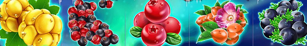 Winter Berries vinstlinje i spelautomaten