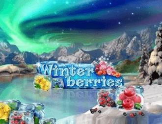Winter berries spelautomaten