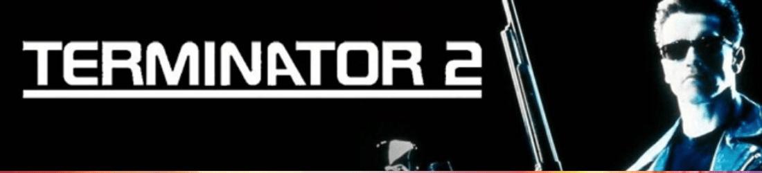 terminator 2 SE microgaming